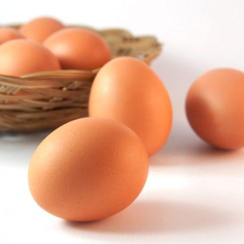 Яйца-600x600