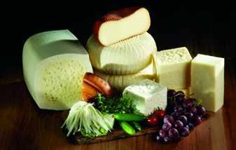 Много разных сыров и овощи